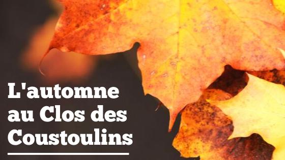 C'est l'automne au Clos des Coustoulins